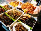 กรมวิทย์เตือนป่วยภูมิแพ้กินแมลงทอดอันตรายถึงตาย