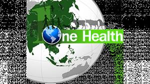 รูปประกอบเป็นรูปกราฟฟิคลูกโลกที่มีคำว่า one health ประกอบ
