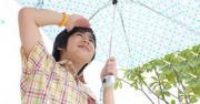รูปเด็กกางร่ม