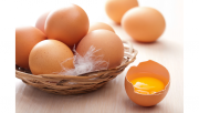 รูปไข่ไก่